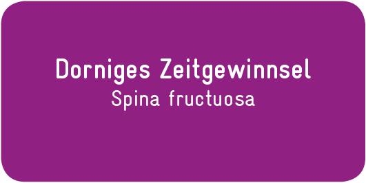 Dorniges-Zeitgewinnsel_Spina-fructuosa