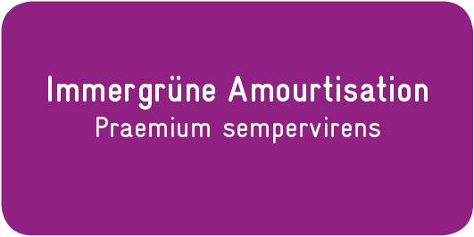 Immergrüne-Amourtisation_Praemium-sempervirens